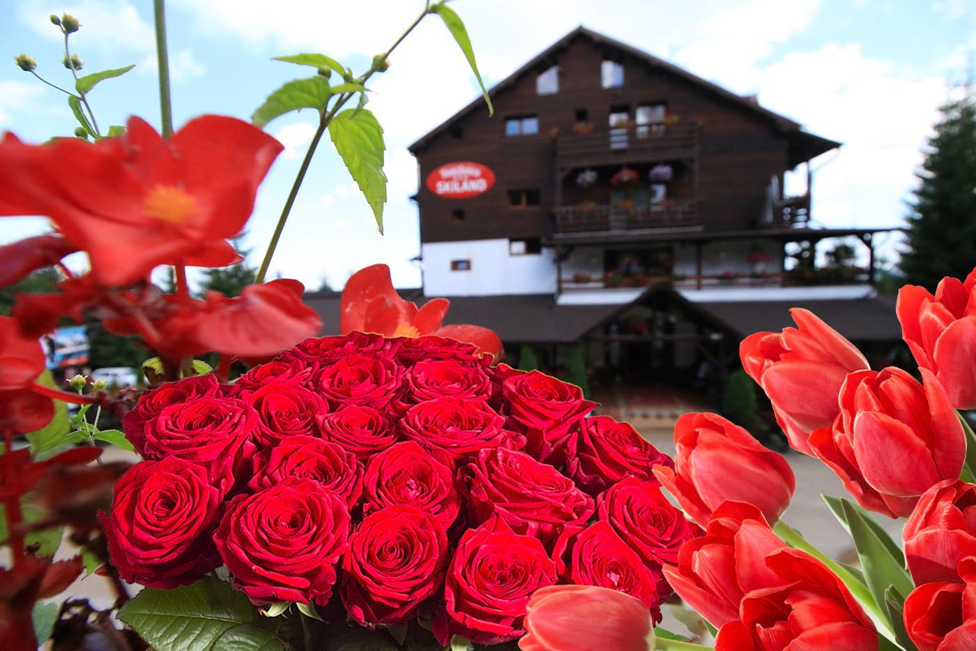 8-martie-pensiunea-skiland-baisoara-cluj-apuseni-muntele-baisorii